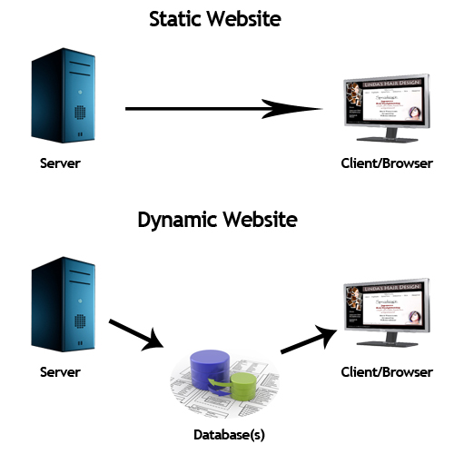 The different between static website and dynamic website